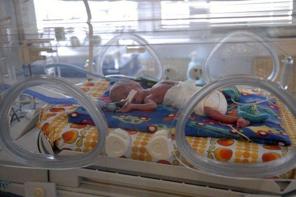 Kritické bábätká. V Košickom kraji ich transportujú najviac.