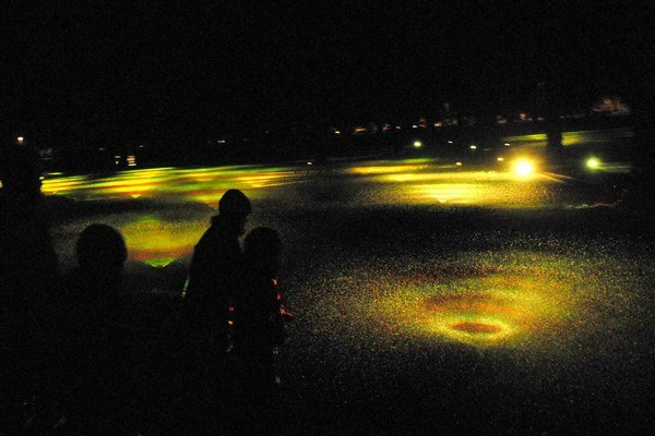 V parku rozkvitli vodné kvety. Medzi vrcholné zážitky patrila svetelná inštalácia Kvapky od Slováka Braňa Bernára.