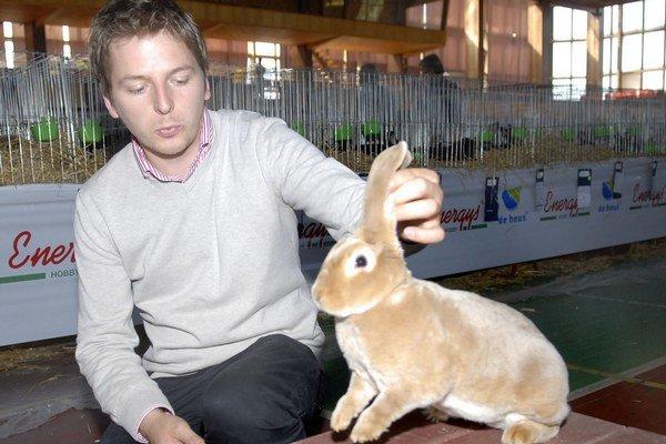 Peter Supuka s majstrom Slovenska 2013. Tento slovenský pastelový rex sa presadil v ukážkovom výstavnom postoji. Ide o naše národné plemeno. Aby dosiahli výstavné králiky požadovanú hmotnosť a tvar tela, musia jesť špeciálne granuly.