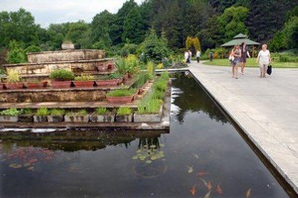 V košickej botanickej záhrade majú aj vzácne sekvoje a viaceré jazierka.
