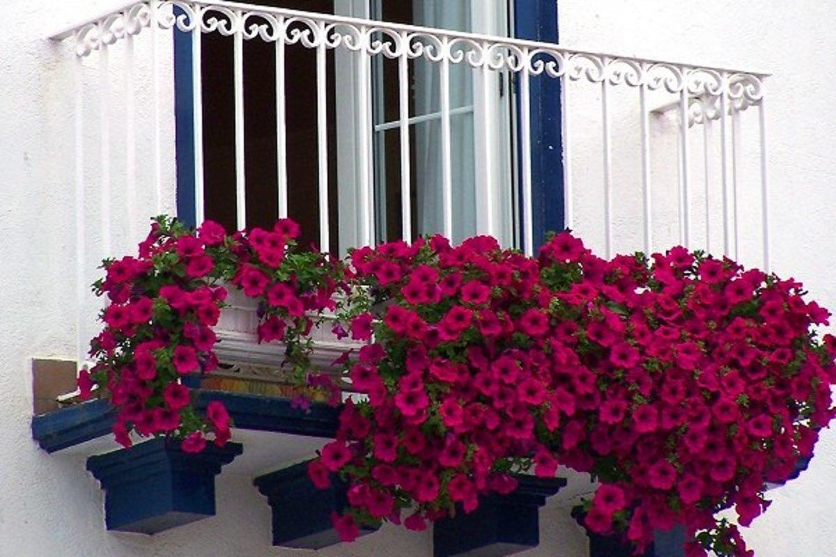 Кованые балконы: фото 80 наиболее изящных вариантов оформлен.