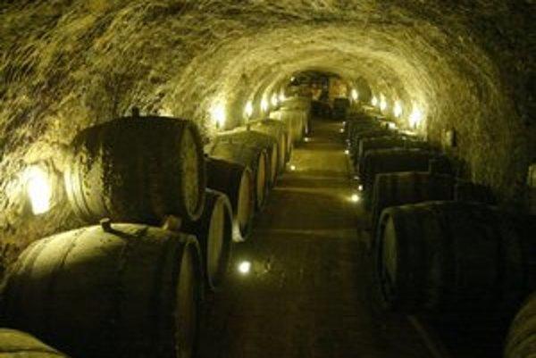 Veľvyslanci navštívia aj tokajské vinné pivnice