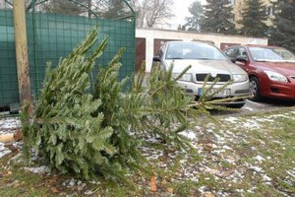 Symboly Vianoc. Končia v mestskej kompostárni.