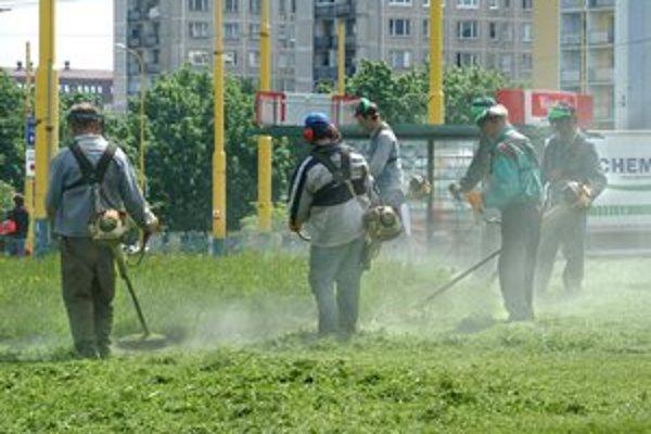 Zeleň sa skracuje. Ako kobylky nabehli kosci na trávniky, aby im upravili fazónu. Rozkvitnutá tráva trápi alergikov.