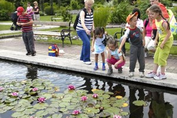Milióny nedopestovali. Botanickú záhradu sužujú problémy s pozemkami. Kúpu si nemôže univerzita dovoliť.