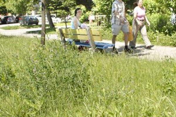 Kosci teraz nekosia. Z tohtoročnej úrody sa vydarila najmä tráva. Steblá šteklia kolená.