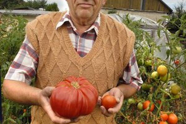 Jozef Vaško s paradajkou-rekordérkou.
