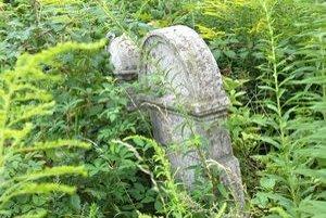 Starý židovský cintorín je dnes zarastený burinou.
