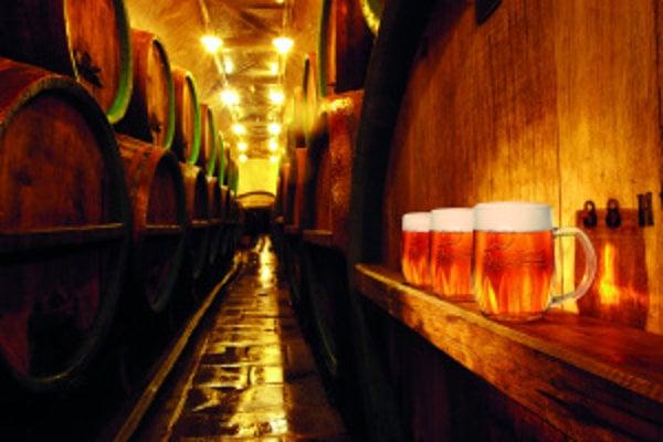Každý svetlý ležiak musí po uvarení niekoľko týždňov dozrievať pri teplote 10 °C. Pivovary majú preto podzemné priestory, kde pivo dozrieva – kedysi vdrevených sudoch, dnes vantikorových cisternách