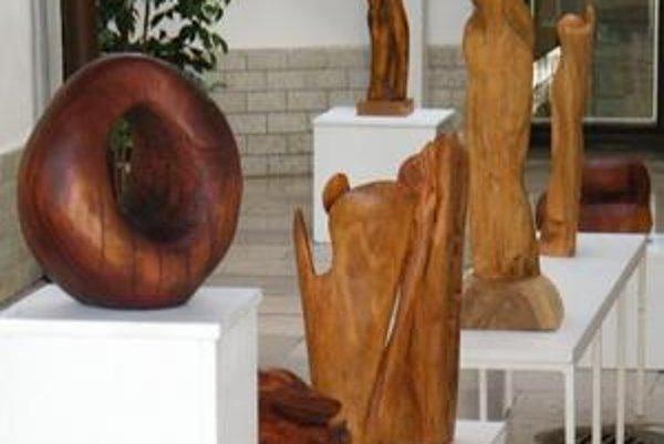 Výstava prác košickej autorky Adriany Andrejkovej-Szekeressovej.