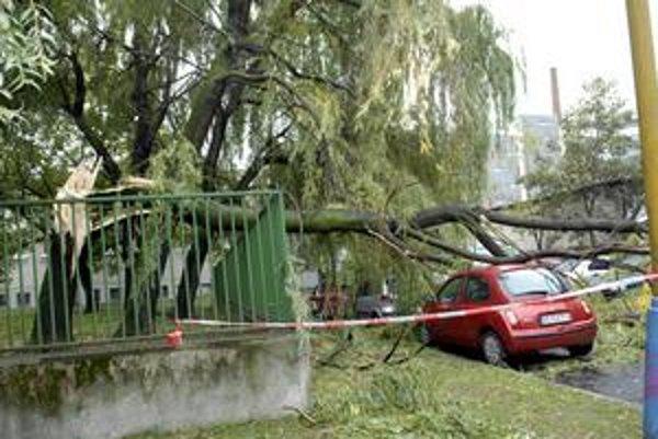 Spadnutý strom. Privalil dve autá.