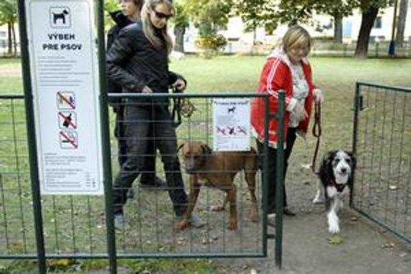 Venčovisko. Mohlo by byť určitým riešením. Ale či tam stihne pes dobehnúť na potrebu, je otázne.