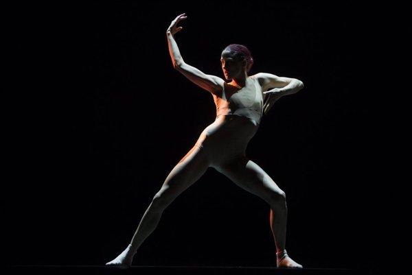 Podobu tanečného súboru Netherlands Dans Theater ovplyvnil aj choreograf Jiří Kylián.
