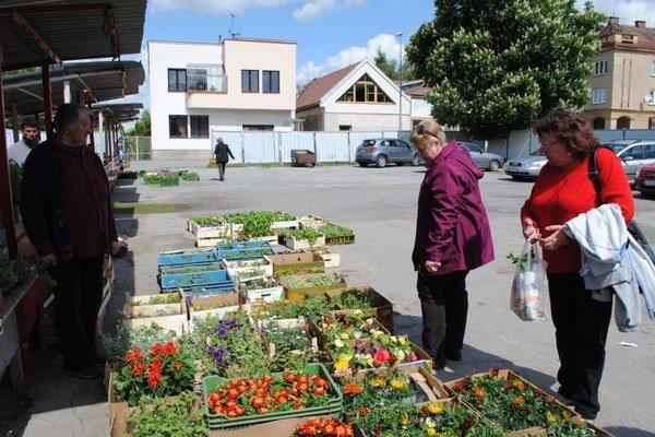 Mestské trhovisko. V ponuke prevažujú kvety a sadenice.