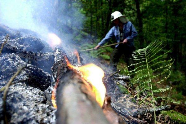 Text k foto: Lesné požiare. Hrozia aj túto jar.