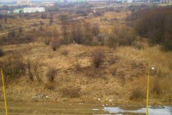 Toto priestranstvo ostane prázdne. Výstavba sa nekoná, pozemky vlastnia súkromní majitelia.