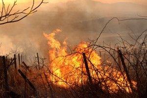Požiar starých vinohradov v katastri obce Hraň, v lokalite Hraňská hora.
