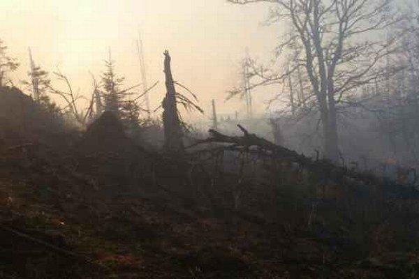 Minuloročný požiar. Ničivý požiar lesa nad Betliarom.