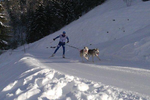 Pretekári. Igor Štefan a jeho psy Puňťo a Fajak.