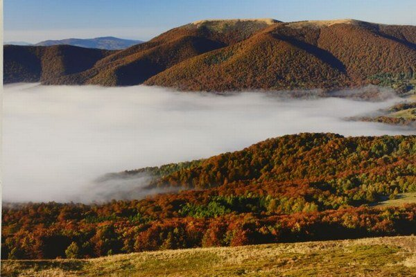 Na snímke jesenné lesy, autor G. Lesniewsky.
