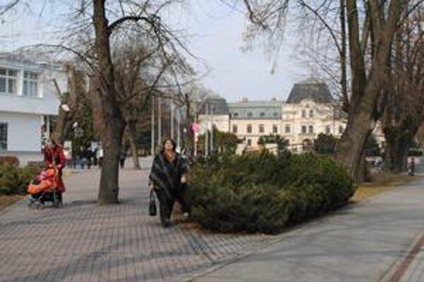 Rozvoj turistického ruchu. Poliaci okrem vlastnej analýzy posudzujú možnosti rozvoja cestovného ruchu aj u partnerských slovenských miest.
