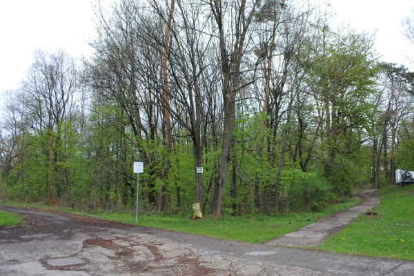 Lesopark Biela hora využívali Michalovčania roky na oddych, šport a relax. Vlastníci pozemkov majú v pláne približne 20 hektárov lesa zmeniť na individuálnu bytovú výstavbu.