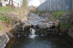 Poruba pod Vihorlatom. Už vyše týždňa býva bobor v potoku za obecným úradom.