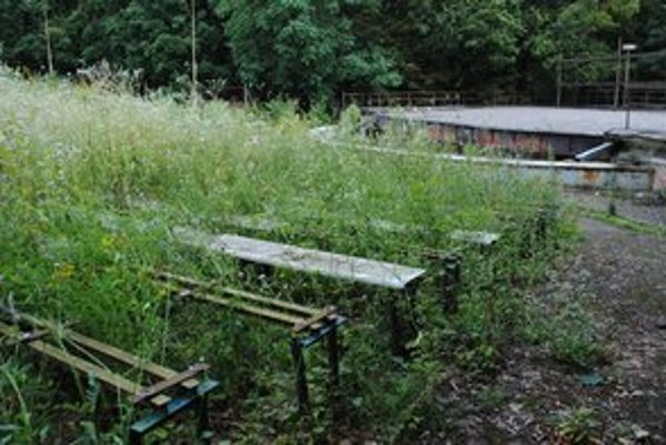 Michalovský amfiteáter. Teraz pripomína džungľu. Prvé vystúpenia tu budú až budúce leto.