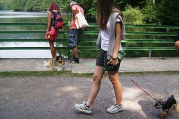 Svetový deň zvierat. Majitelia psov oslávili ich sviatok prechádzkou.