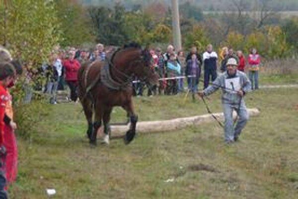 Najlepší furmani z regiónu Zemplína sa stretnú v sobotu v obci Vyšné Remety.