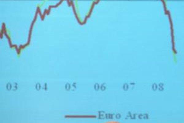 Eurokomisár Almunia hovorí, že vlády by mali podporovať ekonomiku, zároveň ich vyzýva na šetrenie.