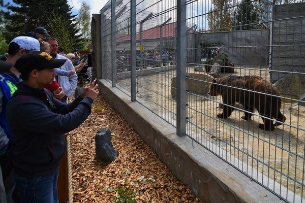 Návštevníci pozorujú jedného z medveďov počas otvorenia nového výbehu.