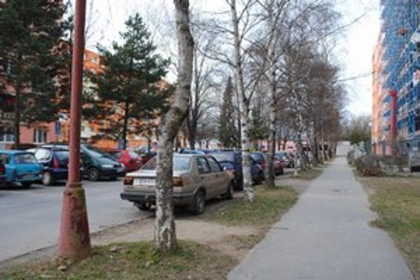 Parkovanie. Zeleň postupne ustupuje autám.