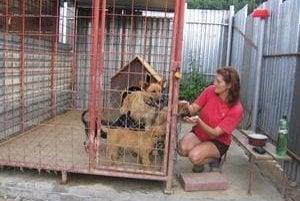Šťastný psík. Matejovský útulok má už prvých nájomníkov, a to sučku Riu a jej šteniatka. Na snímke Silvia Valkošáková.