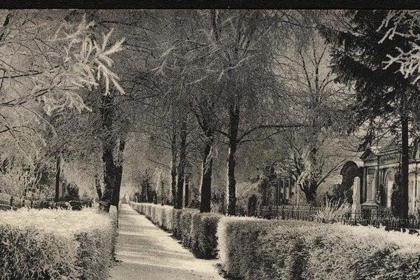 Kežmarský cintorín. Takto vyzeral okoloroku 1900.