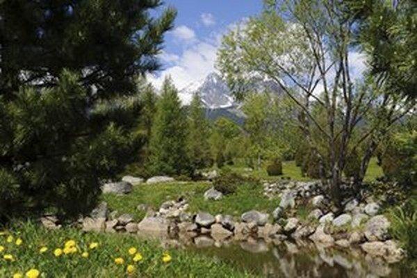 Takto vyzerá botanická záhrada na začiatku leta.