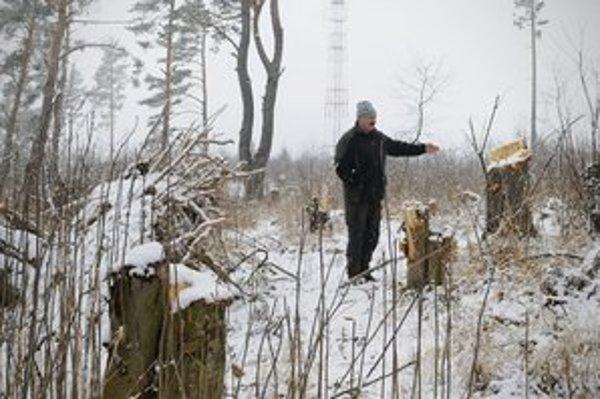 Vedúci ochranného obvodu Tatranské Matliare Štátne Lesy TANAP Eduard Petrášek ukazuje na čerstvé pne borovíc po nelegálnych výruboch v lese neďaleko rómskej osady Stráne pod Tatrami.