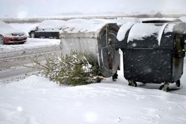 Vianočný stromček pri kontajneri. Typický príklad toho, ako sa Popradčania zbavujú stromčekov.