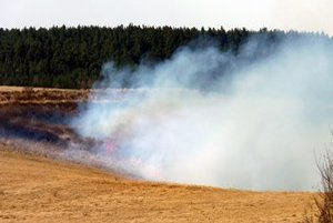 Požiar trávy pri Jánovciach.
