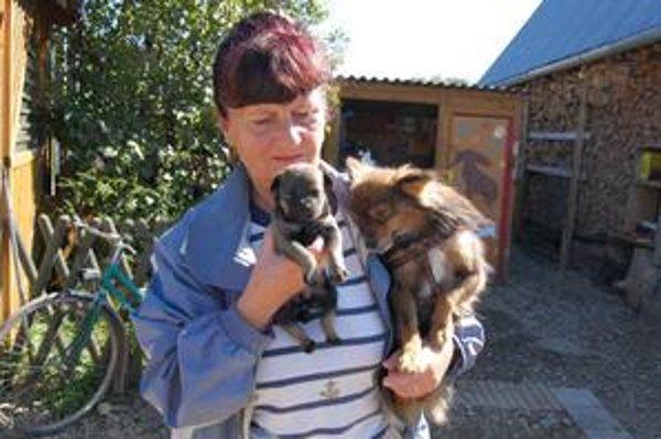Šteniatko Maruška a Donald. Svoj nový domov našlo v piatok v Kežmarku aj šteniatko Maruška. Spolu s Donaldom sa cíti v náručí šéfky útulku spokojne a bezpečne.