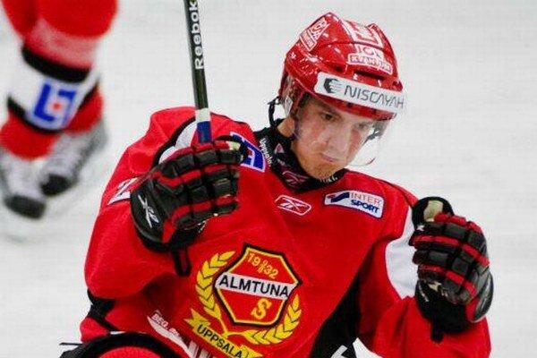 Nováčik najvyššej slovenskej hokejovej súťaže HC Nové Zámky angažoval do svojho kádra švédskeho ofenzívneho obrancu Fredrika Sandgrena.