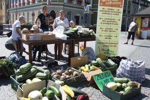 Letný zeleninový festival pripravilo združenie Misia mladých.