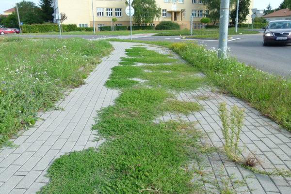 Chodník, alebo zeleň?