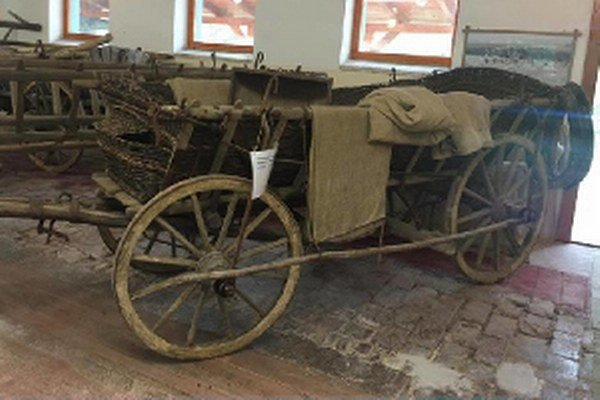 Košina, na ktorej sa vozil vo filme sváko Ragan.