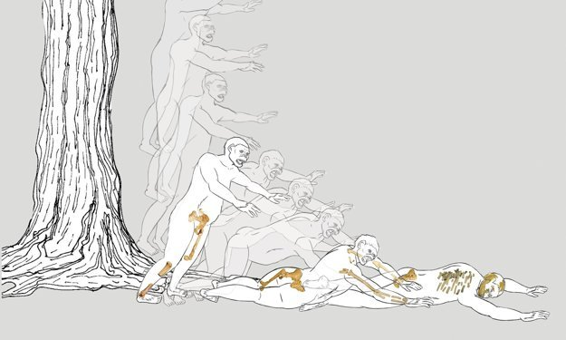 Hypotetické zobrazenie pádu Lucy zo stromu.