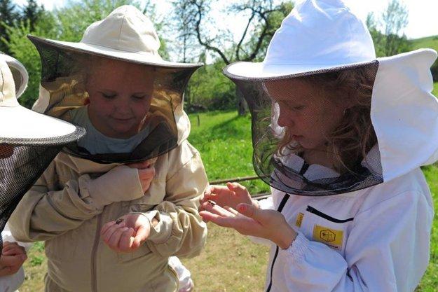 Deti prekonávajú svoj strach zo včiel.