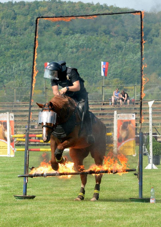 """Oheň zvládne len kôň schladnou hlavou. """"Len pokojné kone dokážu zvládnuť takéto stresové situácie."""