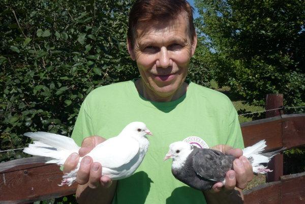 Jozef Hrabal zDolného Kubína je dlhoročným chovateľom akrobatických holubov aneúnavným propagátorom chovu tureckej takly, teda tzv. tlieskačov.