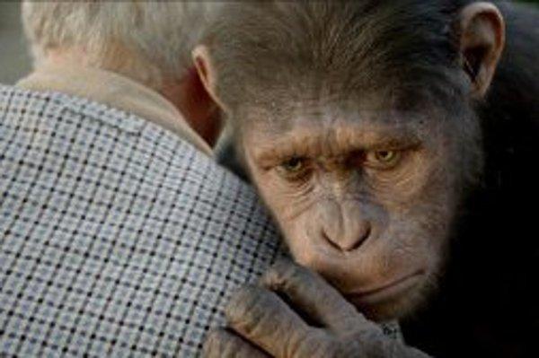 Do kín prichádza americká snímka Zrodenie planéty opíc.