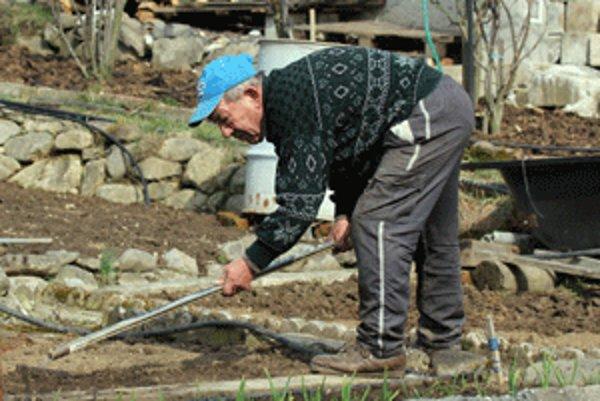Niektorí záhradkári už chystajú hriadky na sejbu zeleniny.